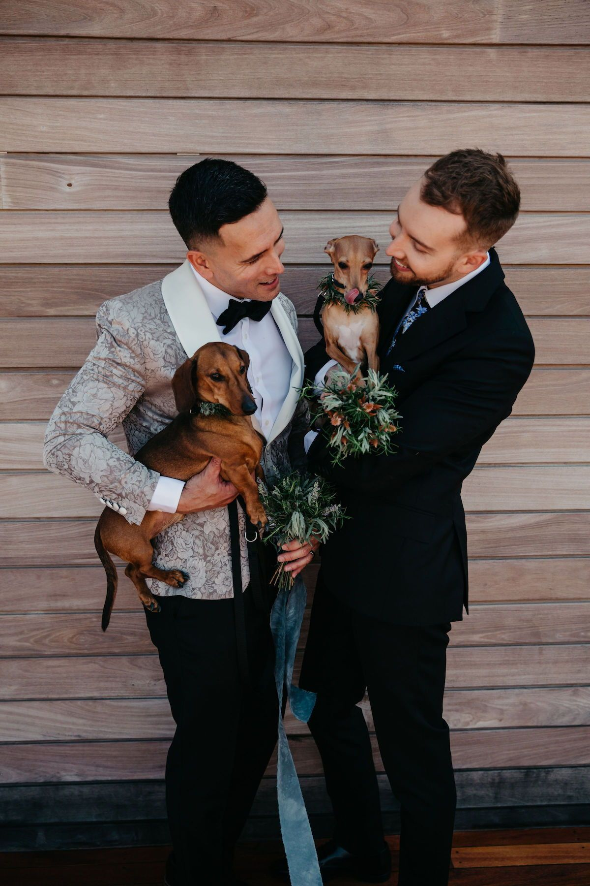 Husband and husband holding their dogs